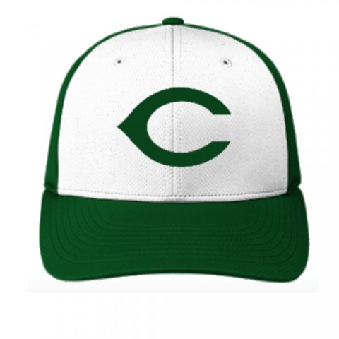 Carter Hornets Baseball Hat